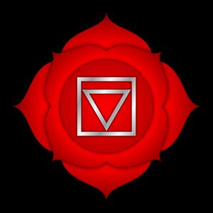 root, chakra, muladhara,energy